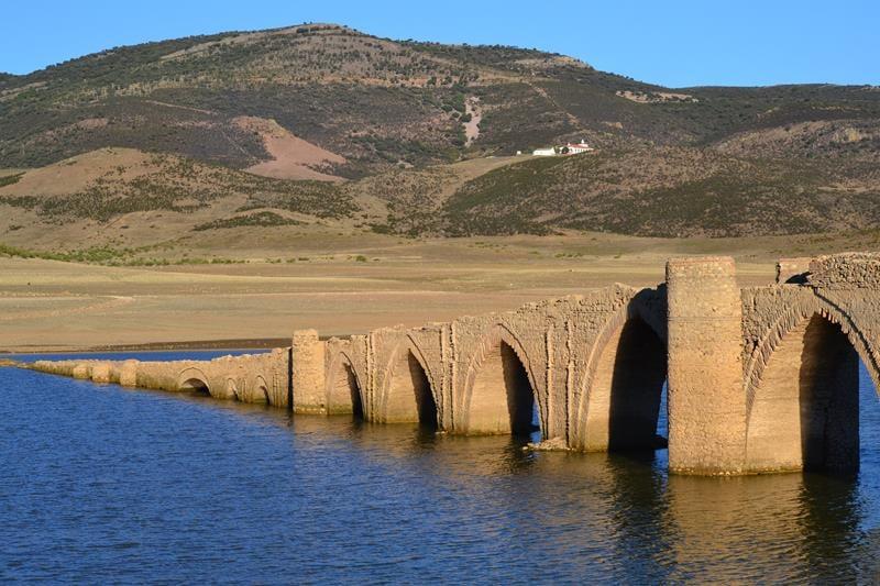 Puente-Villarta-Trashumancia-2