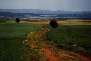 Cañada Real Galiana Provincia de Soria
