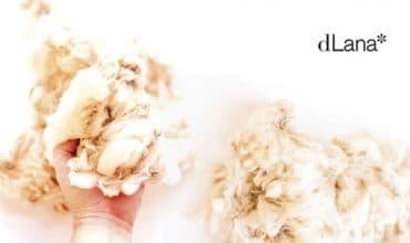portada-7-años-hacerlo-posible-sorrosal-lana-merino-dLana