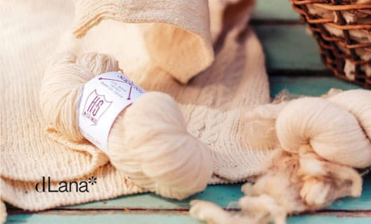portada-sofía-vivir-la-lana-sorrosal-dLana